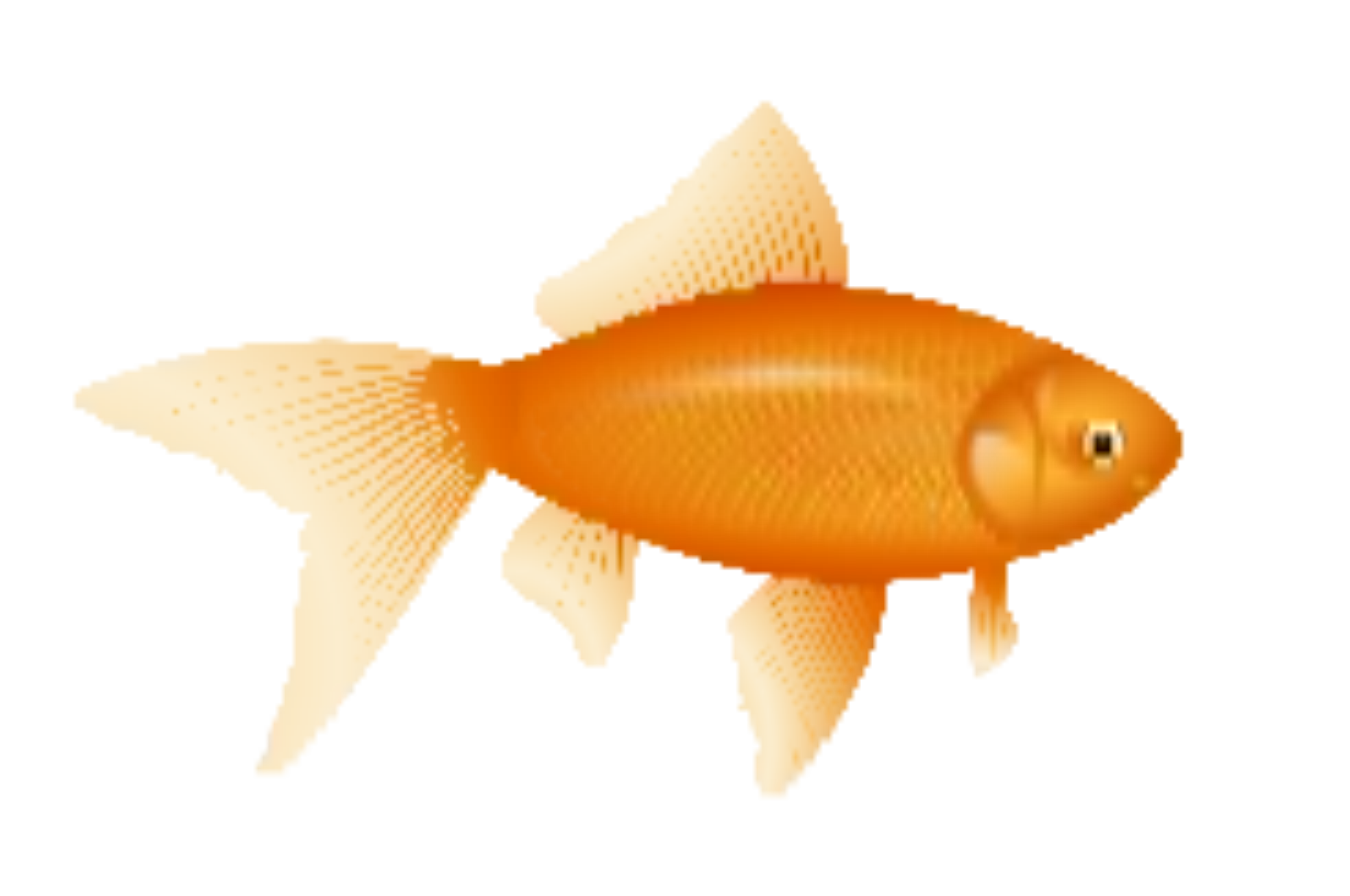 Flif example for Fishpond fishing